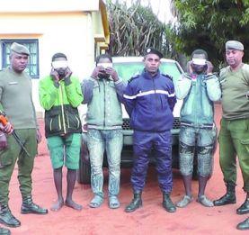 Ranohira - Trois coupeurs de route dans les filets de la Police et de la Gendarmerie