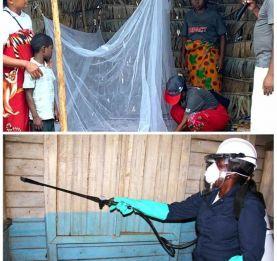 Epidémie de paludisme - Près de 200 décès enregistrés à Midongy du Sud